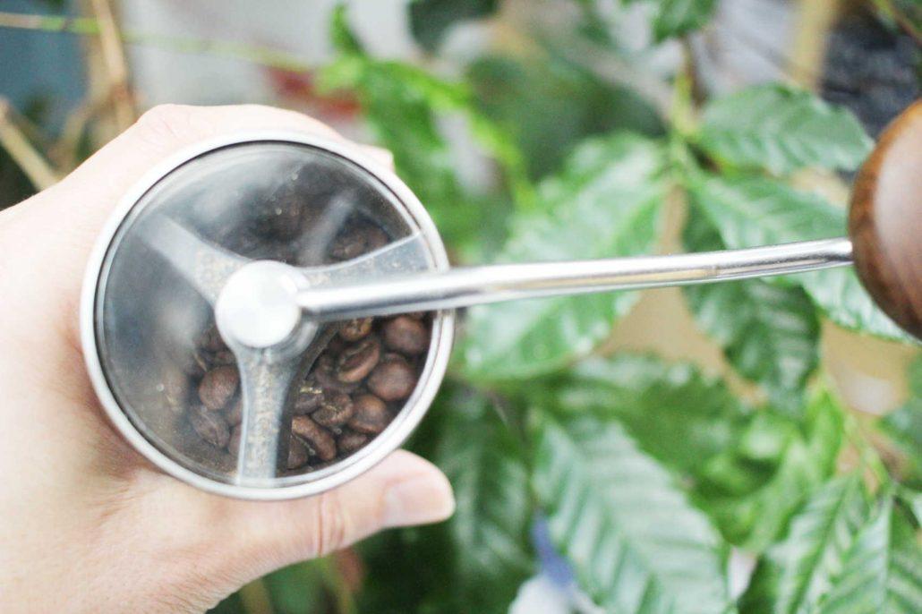 najlepsia talianska kava gardelli acaia vaha na kavu